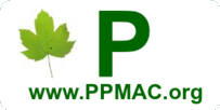 Portal Medicinais - Aromáticas - Condimentares